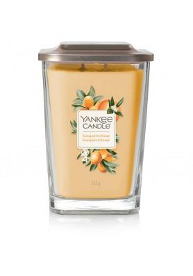 Кумкват и апельсин Kumquat and orange 552гр / 65-80 часов