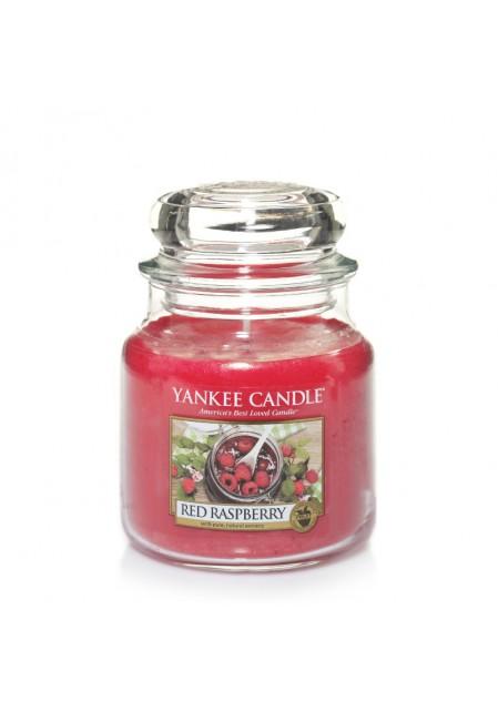 Красная малина Red raspberry 411 гр / 65-90 часов+