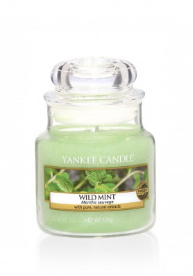 Ароматическая свеча Yankee Candle Wild Mint / Дикая мята