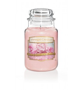 Пудровый букет Blush Bouquet 623 гр / 110-150 часов