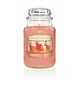 Клубничный беллини White Strawberry Bellini 623 гр / 110-150 часов