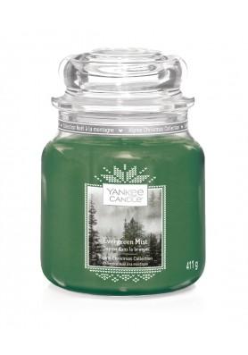 Вечнозеленая хвоя Evergreen Mist 411 гр / 65-90 часов