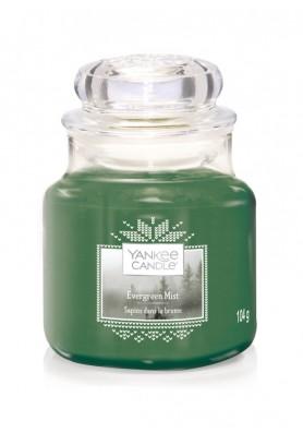 Вечнозеленая хвоя Evergreen Mist  104гр / 25-45 часов