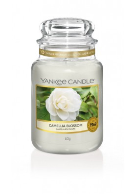Цветущая камелия Camellia Blossom 623 гр / 110-150 часов