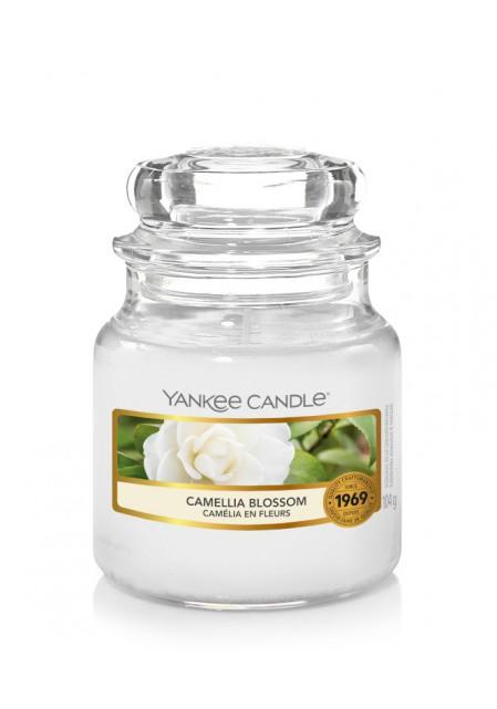 Цветущая камелия Camellia Blossom 104гр / 25-45 часов